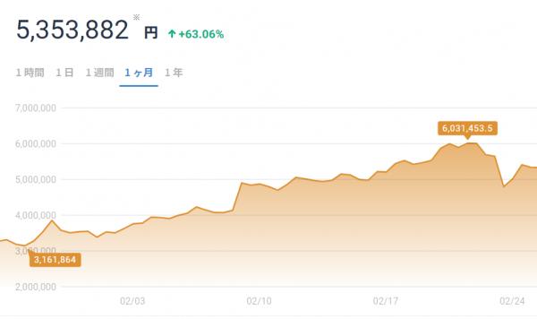 ビットコイン2月の値動き